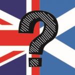 The Jungle Referendum